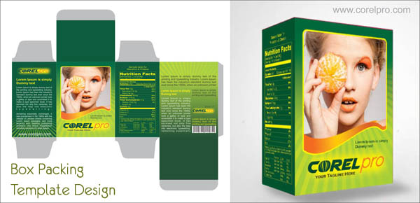 Box Packing Template